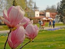 Přivítání jara Hévíz