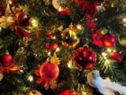 Vánoce v hotelu Járja 6